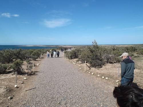 Viaje a Puerto Madryn  2014 Aa14_zpsbc2a8d48