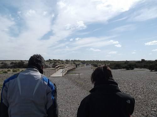 Viaje a Puerto Madryn  2014 Aa27_zps35a341ae