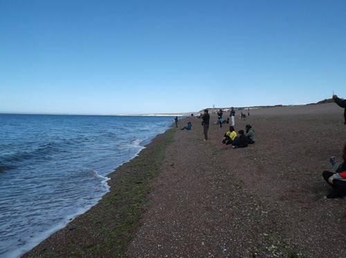 Viaje a Puerto Madryn  2014 Bt18_zpsc42418c0