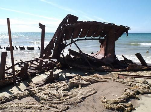 Viaje a Puerto Madryn  2014 Bt3_zps1b7d06e7