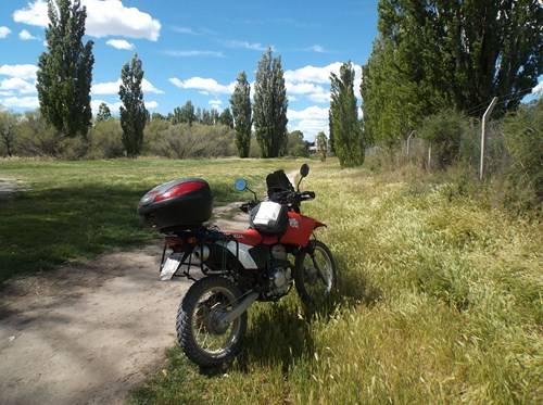 Viaje a Puerto Madryn  2014 Ee4_zpsf34b3755