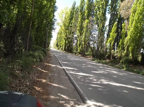 Viaje a Puerto Madryn  2014 Ee6_zps94fce17d