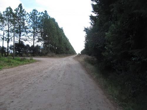 Endureros de teclado 02: Jáuregui-Mercedes-Plomer  (por tierra) IMG_5694_zps03955773
