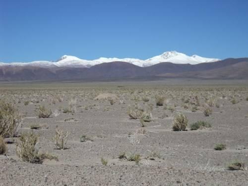 Ruta 40 Norte, algo de Bolivia y Chile - Página 2 DSC01881_zpsda9f5361