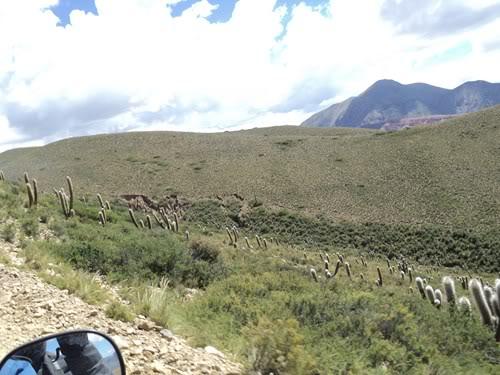 Ruta 40 Norte, algo de Bolivia y Chile DSC01405