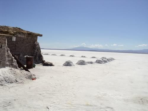 Ruta 40 Norte, algo de Bolivia y Chile - Página 2 DSC01508