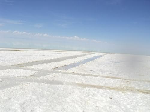 Ruta 40 Norte, algo de Bolivia y Chile - Página 2 DSC01574