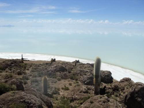 Ruta 40 Norte, algo de Bolivia y Chile - Página 2 DSC01598