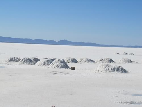 Ruta 40 Norte, algo de Bolivia y Chile - Página 2 IMG_0259