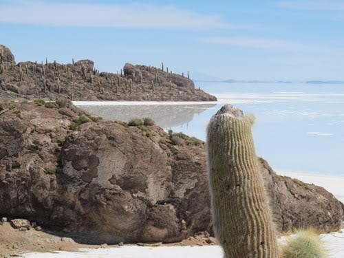 Ruta 40 Norte, algo de Bolivia y Chile - Página 2 IMG_0312