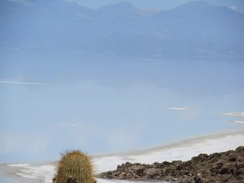 Ruta 40 Norte, algo de Bolivia y Chile - Página 2 IMG_0317