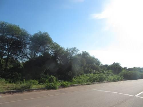 Viaje por Paraguay y Misiones-2014 IMG_8061_zps0acb60cd
