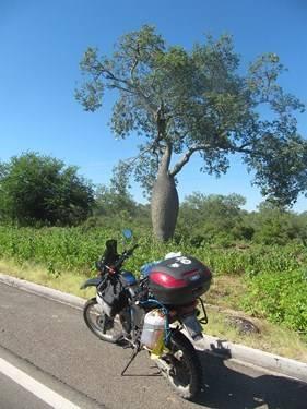 Viaje por Paraguay y Misiones-2014 IMG_8122_zpsaae4a6a1