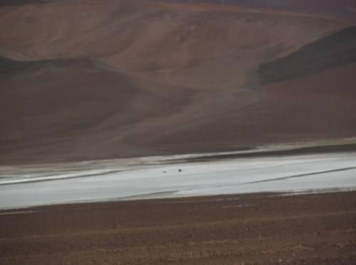 NOA, Norte de Chile y RN 40 DSCF1922_zps3zgyldj5