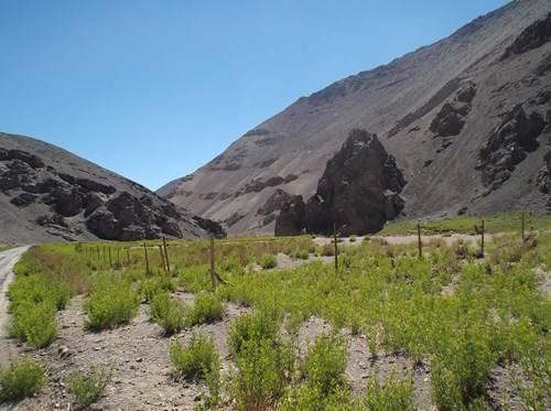 NOA, Norte de Chile y RN 40 DSCF2016_zpshvav8mgi