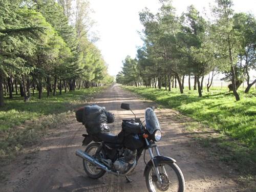 Viaje a Sierra de la Ventana.2014 IMG_9190_zps41745e22