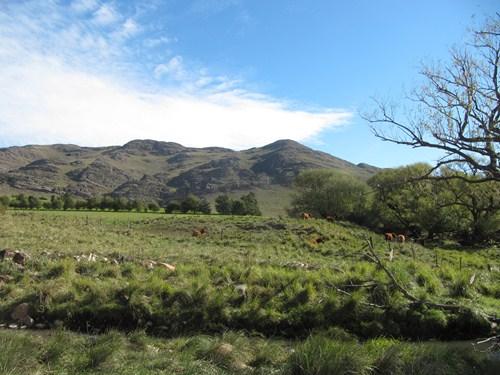 Viaje a Sierra de la Ventana.2014 Kk5_zpsbed8f765