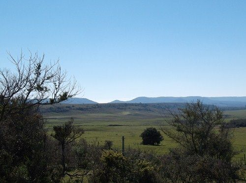 Lechonidas Trip 01: Uruguay 2014 104_zps4f6e5972