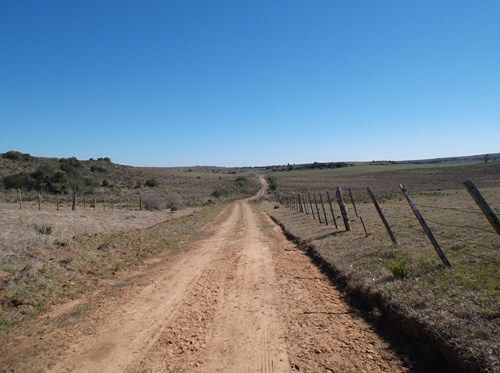 Lechonidas Trip 01: Uruguay 2014 109_zps83fc1b20