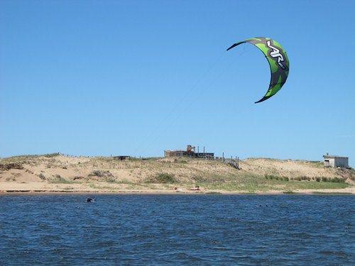 Uruguay Noviembre 2012 - Página 2 IMG_2557_zps58282e24