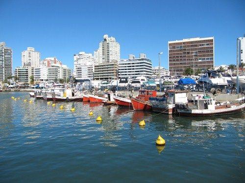 Uruguay Noviembre 2012 - Página 2 IMG_2635_zps7ca9582e