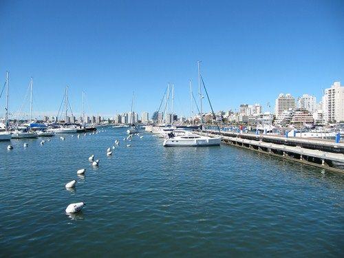 Uruguay Noviembre 2012 - Página 2 IMG_2644_zps38100d54