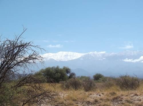 NOA, Norte de Chile y RN 40 DSCF1847_zpsa5btpwmc