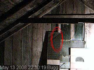 Pictures of ghosts... Isitagirlor2