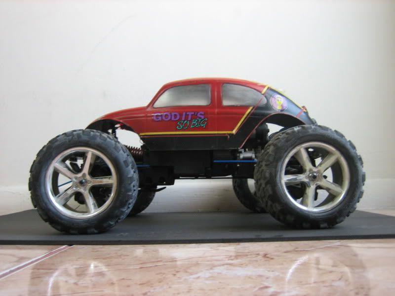 Monster Beetle IMG_1803
