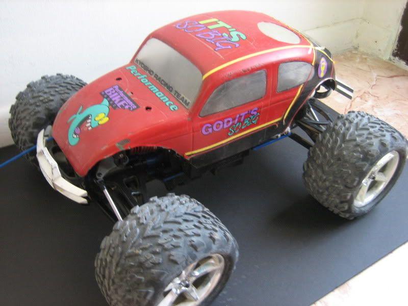 Monster Beetle IMG_1808