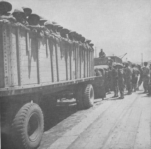 "Ethiopian ""Kagnew"" (Conquerors)  Battalion 45"