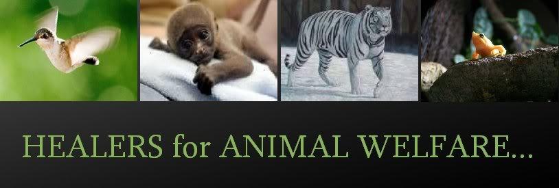 Healers for Animal Welfare