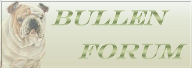 Bullenforum GetAttachment