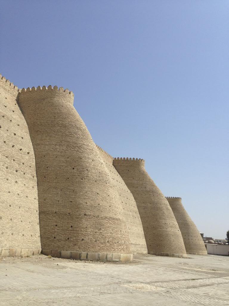 Remparts d'Asie Centrale IMG_1763_zps91bcc2c2