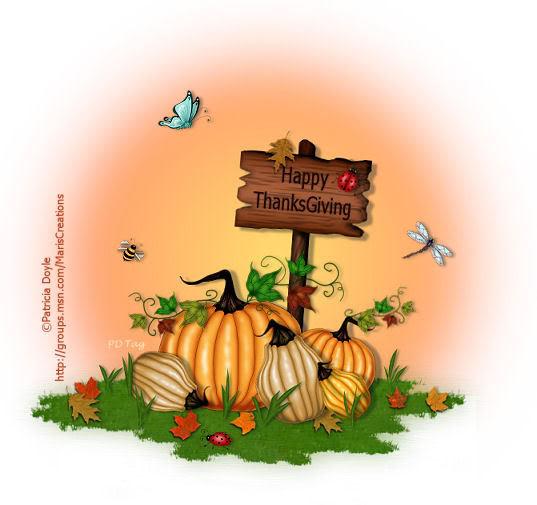 Happy Canuck Thanksgiving! PDPumpkinPatch5HappyThanksgiving