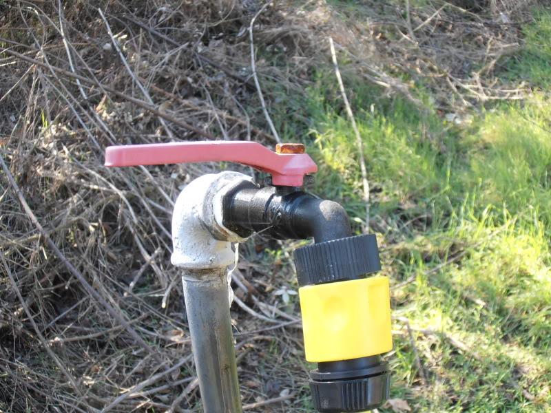 rubinetti P1250056