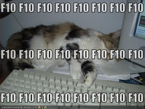 Happy National Cat Day! Funny-pictures-cat-sleeping-f10-key