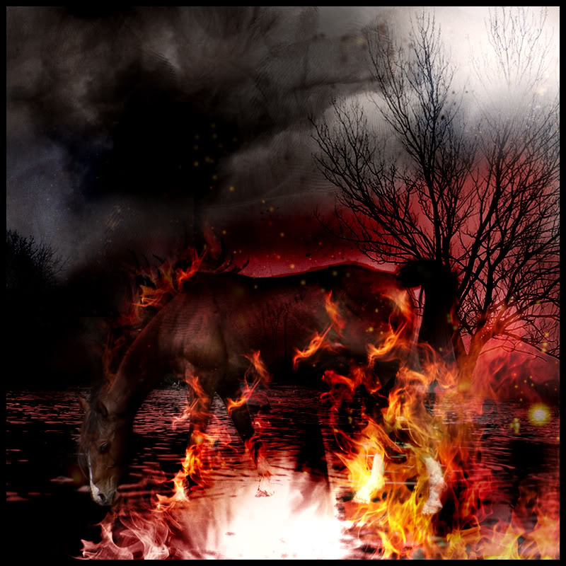 Liquid Fire Herd Fire_Horse__by_his_tears