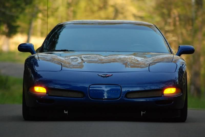 Cars I've had DSC_00128x6