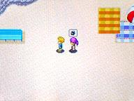 hướng dẫn havest moon DS Gambler