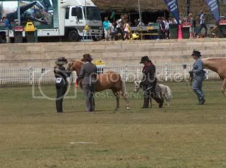 Perth Royal Show... 070-6