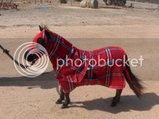 Red Fleece Show set 073-9