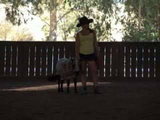 Western Australian Bucksin  Show 096-4