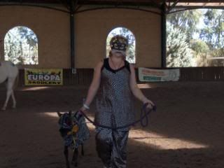 Western Australian Bucksin  Show 105-4