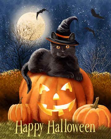 Halloween Happy_Halloween_Kitty72