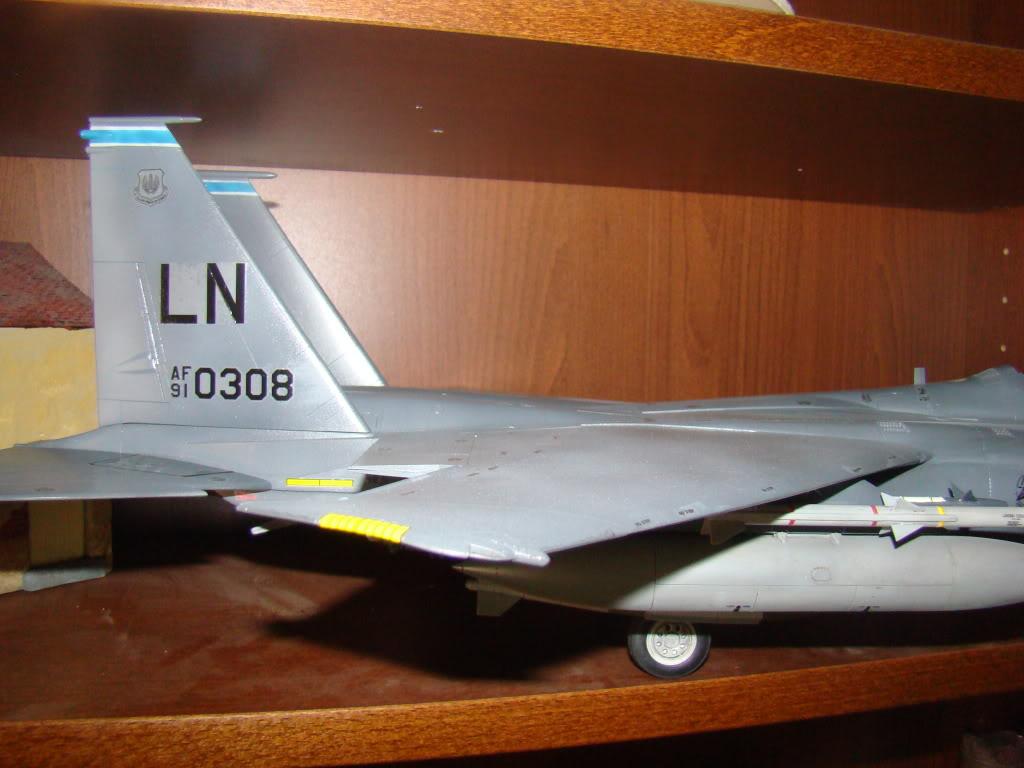 bunker - F 15E Strike Eagle  Bunker Buster - Page 2 DSC00893