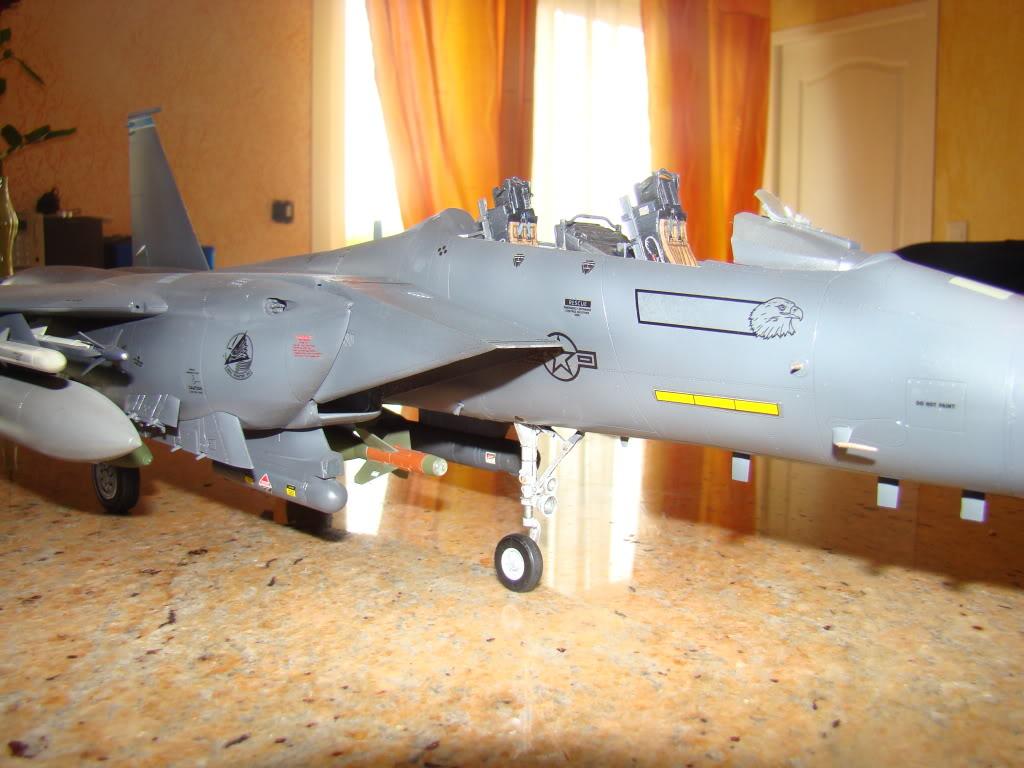 F 15E Strike Eagle  Bunker Buster - Page 2 DSC00897