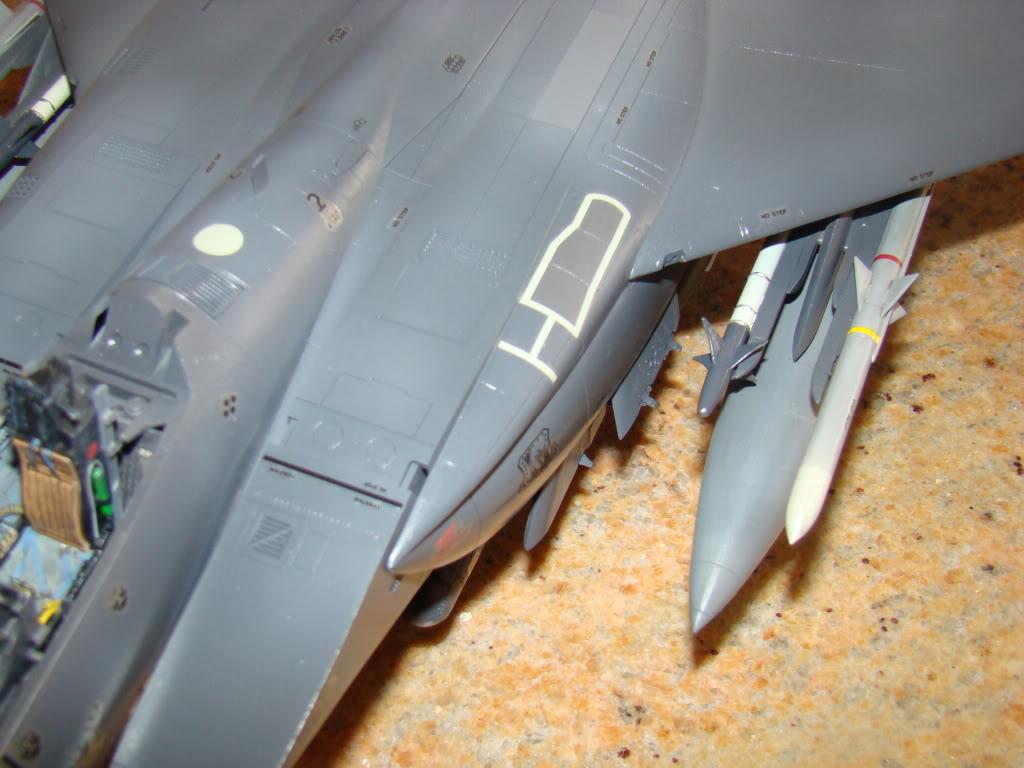 bunker - F 15E Strike Eagle  Bunker Buster - Page 2 DSC00900
