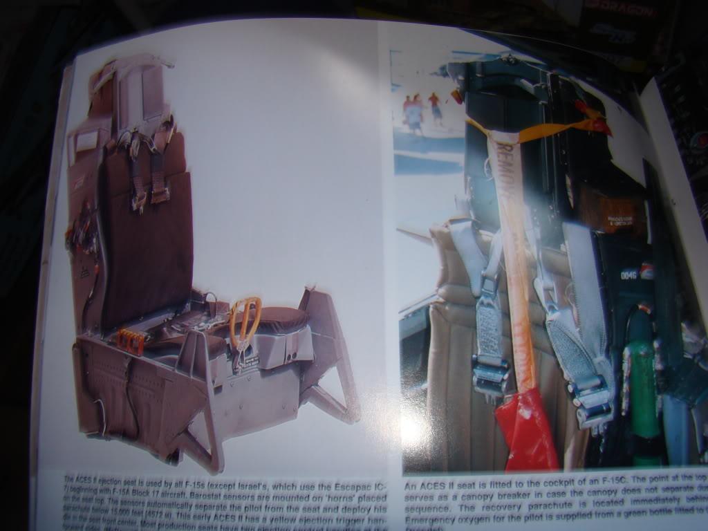 bunker - F 15E Strike Eagle  Bunker Buster DSC08261