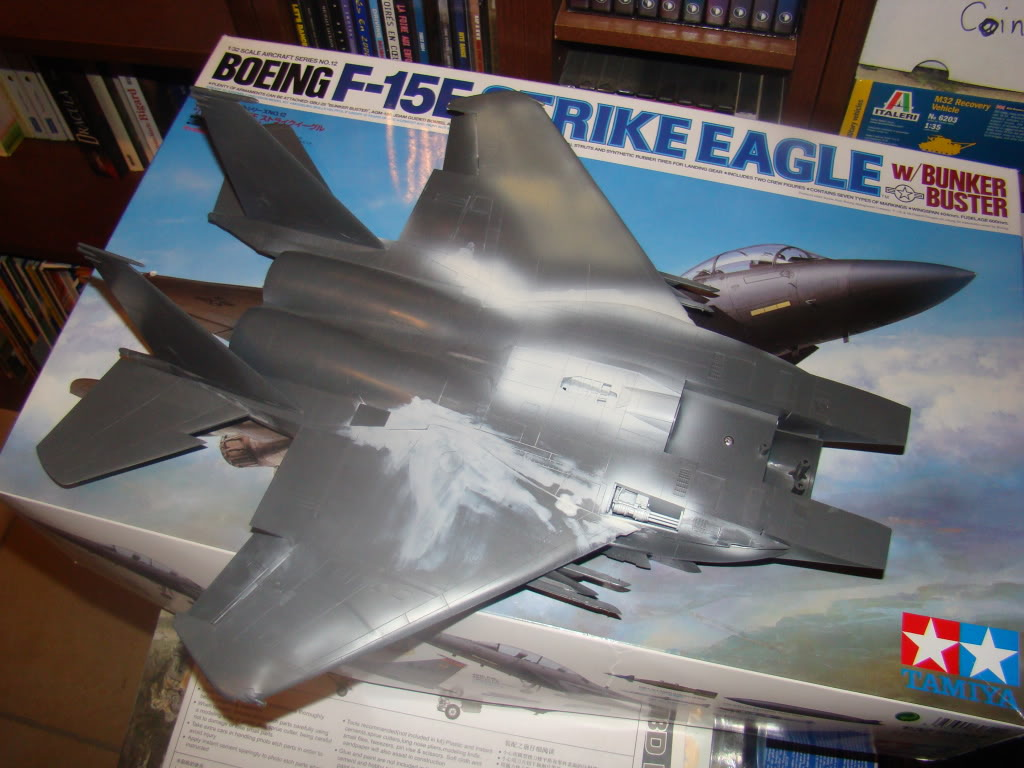 bunker - F 15E Strike Eagle  Bunker Buster DSC09709